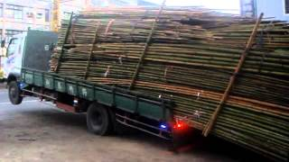 Unloading Bamboo From Truck Like A Boss!