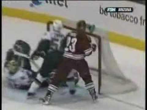 NHL Goalies Video