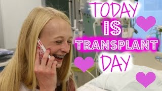 TODAY IS TRANSPLANT DAY   UPDATE #5  