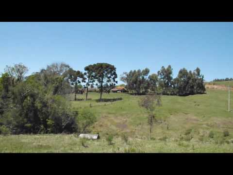 ÁREA RURAL COM 19,2 HECTARES - Áreas Rurais  - Interior - Itatiba do Sul