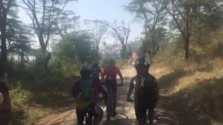 RVO cyclist perspective