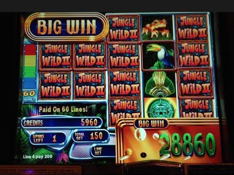 Jungle Wild II - WMS - BIG WIN! Money Burst Slot Machine Bonus