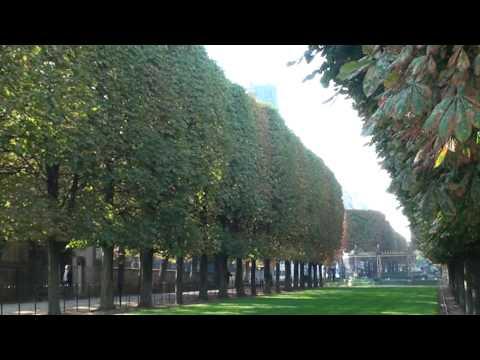 Automne au jardin du luxembourg parnassienne passag re for Aller au jardin du luxembourg