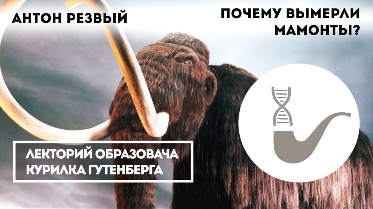 Почему вымерли мамонты