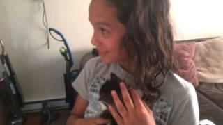 Thalia's gift...a kitten!!!