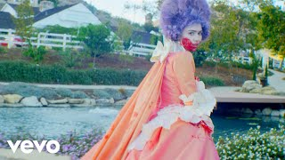 Grimes - Flesh without Blood/Life in the Vivid Dream - YouTube