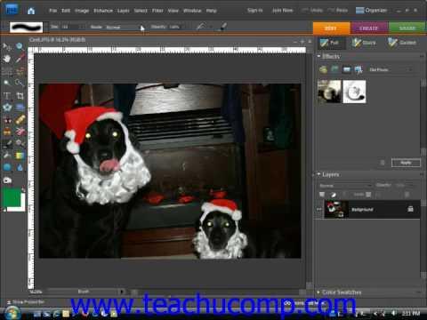 Photoshop Elements Tutorial The Brush Tool Adobe Training Lesson 6.2