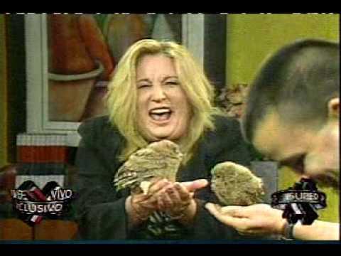 Susan Soltero y el buo cagon