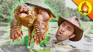 RESPECT the SNAPPER...Turtles can be Dangerous! by Brave Wilderness