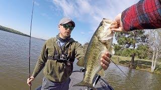 Video Fresh Spring Bass Beyond Flooded Grass MP3, 3GP, MP4, WEBM, AVI, FLV Mei 2019