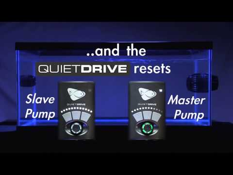 Setting Up a Master Slave Relationship 2 Pump Configuration