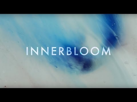 RÜFÜS DU SOL ●● Innerbloom (Official Video)