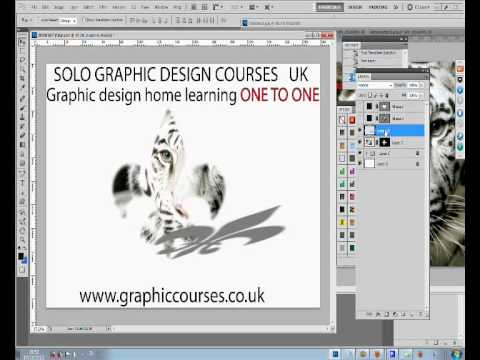 Courses to Learn Web Design  UK