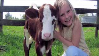 FARM - If your children enjoy Baby Einstein or Thomas the Tank Engine, they will love this also! full download video download mp3 download music download