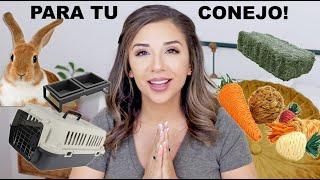TODO LO QUE NECESITAS CUANDO OBTIENES UN CONEJO (ENGLISH SUBTITLES!!) by Lennon The Bunny