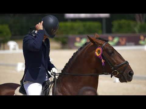 Visita oficial à XII Feira do Cavalo de Ponte de Lima 2018