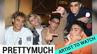 """Subscribe to Hollywire for The Latest Pop and Music News Updates!  http://bit.ly/Sub2HotMinuteIf One Direction's hiatus and the fellas solo projects left a gaping hole in your heart, then we have the PERFECT new boy band to fill that void… I'm talking about Simon Cowell's new music venture, PRETTYMUCH. Now I can predict that we'll be seeing A LOT of them very soon – especially with their debut single """"Would You Mind"""" dropping TODAY, so let's break down why PRETTYMUCH is the next big thing in pop music.Visit our website for all things celebrity  http://www.hollywire.com/Follow Hollywire!  http://bit.ly/TweetHollywireSend Chelsea a Tweet!  http://bit.ly/TweetChelseaFollow Chelsea on Instagram!  http://bit.ly/1QG0Ok5"""