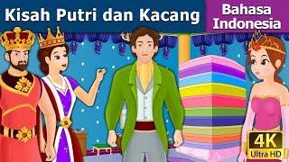 Video Kisah Putri dan Kacang   Dongeng anak   Kartun anak   Dongeng Bahasa Indonesia MP3, 3GP, MP4, WEBM, AVI, FLV Maret 2019