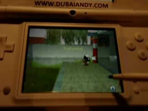 Igor : Le Jeu Nintendo DS