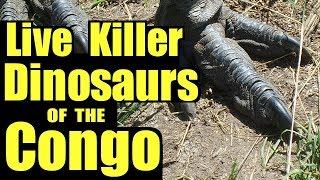 Living Dinosaurs of the Congo ♦️ Mokele Mbembe
