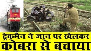 Video Railway Trackman Saves Life of Passengers from Cobra MP3, 3GP, MP4, WEBM, AVI, FLV Maret 2019