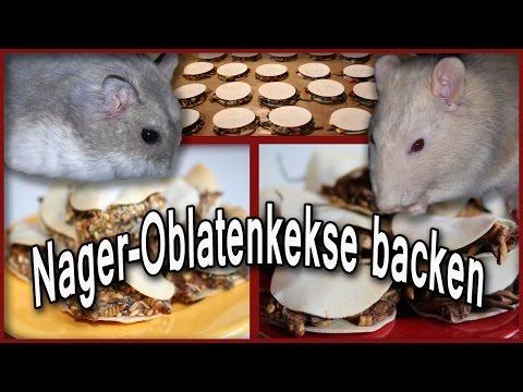 Nager-Oblatenkekse backen (DIY)
