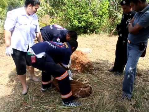 Cảnh sát Thái Lan té ngửa khi nhằm tưởng xác con chó với xác người