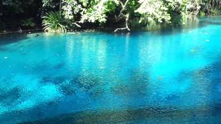 Luganville Vanuatu  city photo : Ri Ri Blue Hole, Espiritu Santo Island, Vanuatu 2013