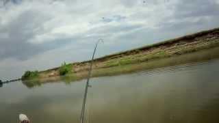 Рыбалка на Ахтубе, Судак на джиг, лето 2014, продолжение