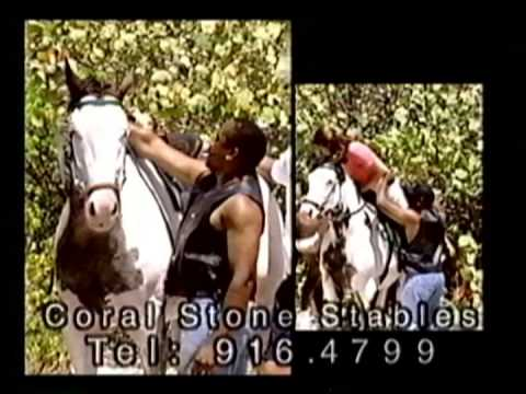 Horseback Riding on the beach in the Cayman Islands with Coral Stone Stables