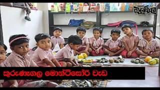 Balumgala 2017 06 16