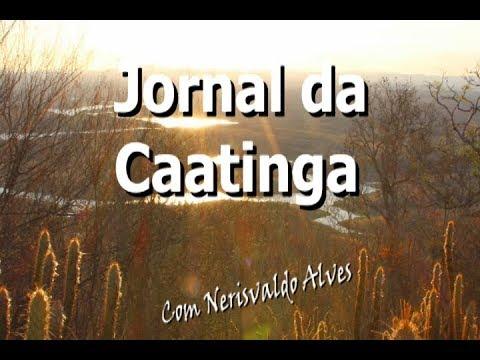 JORNAL DA CAATINGA #03