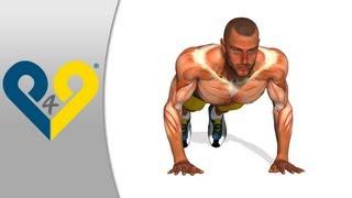 تمرينات الضغط -- فتح الزراعين بعرض الصدر