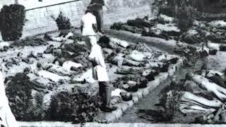 Taipan - White Fog Of Bhopal