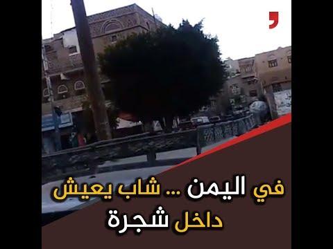 شاب يمني يعيش داخل شجرة...هذه قصته