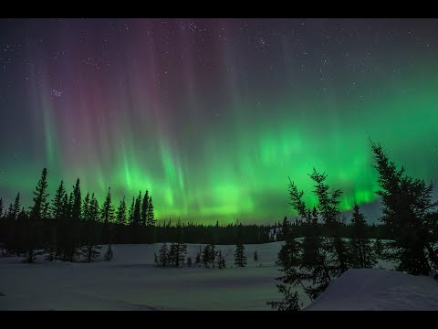 One Hour Stress Relief Therapeutic Video 4k/Nature Relaxation Aurora Borealis Real Time Video