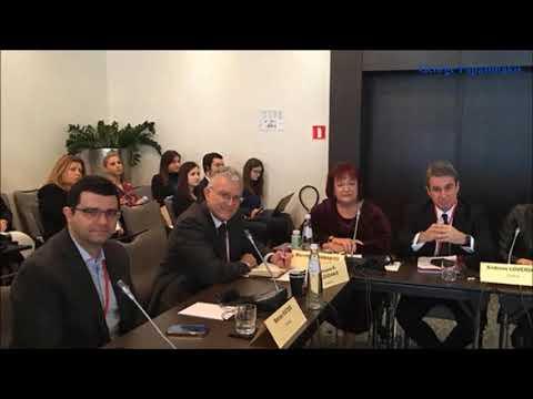 Video - Γιαννάκου: Γιατί αποχωρήσαμε από την κοινοβουλευτική συνέλευση του ΝΑΤΟ