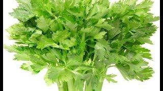 Seledri secara ilmiah disebut dengan nama Apium graveolens. Termasuk ke dalam jenis sayuran, seledri adalah tanaman dari keluarga Apiaceae. Selain dipakai sebagai tambahan dalam masakan, seledri juga memiliki banyak manfaat untuk tubuh manusia.http://tiny.cc/manfaatdaunseledriTemukan Wong Sehat Di Sosial MediaWebsite  :  http://bit.ly/wongsehatFacebook :  http://bit.ly/fp-wongsehatTwitter  :  http://bit.ly/twitter-wongsehatGoogle+  :  http://bit.ly/gplus-wongsehat