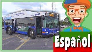 Video del Bus para Niños por Blippi Español | Videos Educacionales para Niños