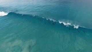 Esperance Australia  City new picture : Dolphin Haze, Esperance Australia