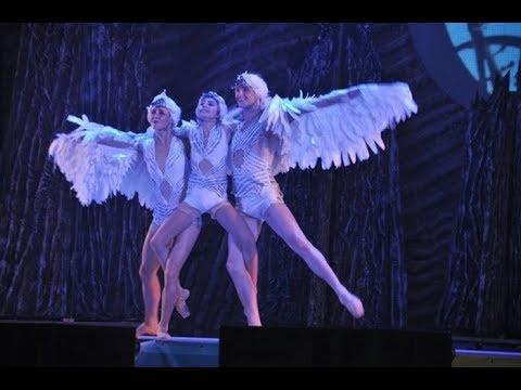 В День города житомирянам подарили современную постановку балета «Лебединое озеро». ВИДЕО