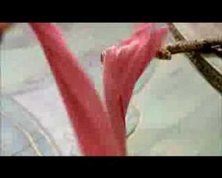 House of Flying Daggers (2004) ฟลายอิ้ง แด็กเกอร์ส จอมใจบ้านมีดบิน [HD]