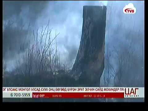 Иргэдийн санамсар болгоомжгүй байдлаас үүдэж ой хээрийн түймэр их гарч байна