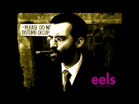 Tekst piosenki Eels - Last time we Spoke po polsku