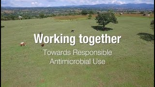 Working together towards responsible antimicrobial use