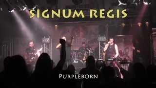 Video SIGNUM REGIS - Purpleborn live 7/11/2015