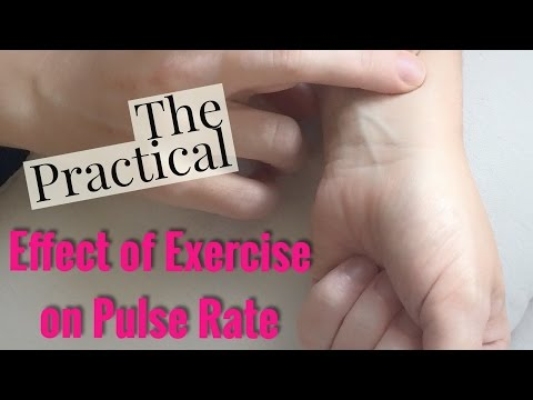 Examining the Effect of Exercise on Pulse Rate-Updated