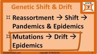 "SKIP AHEAD:0:30 – Flu Symptoms & Treatment2:43 – Influenza Complications3:31 – Influenza Vaccine (Flu Shot)5:30 – Genetic Shift, Genetic Drift & Reassortment 9:19 – Neuraminidase & Hemagglutinin The text and pictures from this video are available here http://www.stomponstep1.com/influenza-virus-the-flu-genetic-drift-shift-neuraminidase-hemagglutinin/Pictures Used:• Derivative of ""3D Influenza virus"" by NIH available at https://commons.wikimedia.org/wiki/File:3D_Influenza_virus.png via Public Domain• ""Virus Replication large"" by YK Times available at https://commons.wikimedia.org/wiki/File:Virus_Replication_large.svg via Creative Commons Attribution-Share Alike 3.0 Unported"