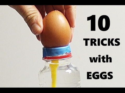 Video 10 AMAZING TRICKS WITH EGGS! download in MP3, 3GP, MP4, WEBM, AVI, FLV January 2017