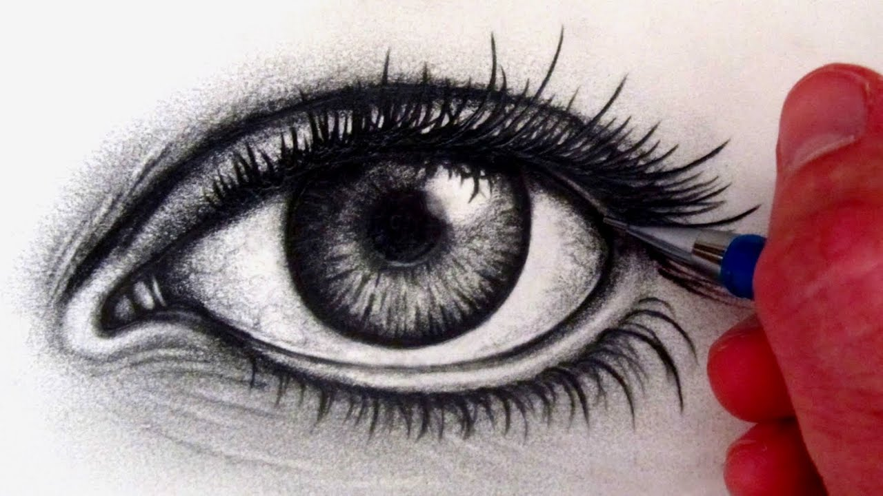 Dog Easy Steps For Kids How To Draw A Realistic Eye #howtodraw #eye How  To Draw Eyes Hd Images